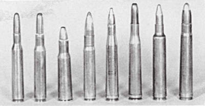Suitable grizzly bear calibers