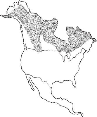 North American Range of the Woodland Caribou, Mountain Caribou, and Barren Ground Caribou