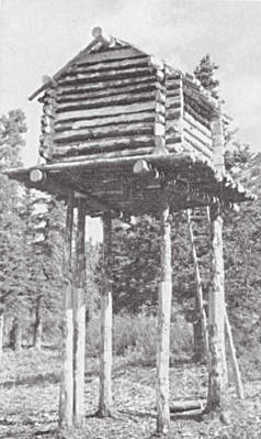 Elevated cache to store food at a hunting camp