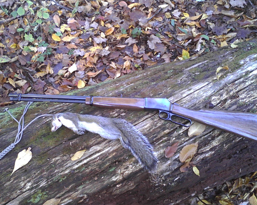 Browning BL-22 and Squirrel