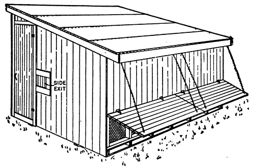 portable poultry colony brooder house